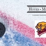 Hoyes Michalos Proudly Sponsoring The Sun County Panthers