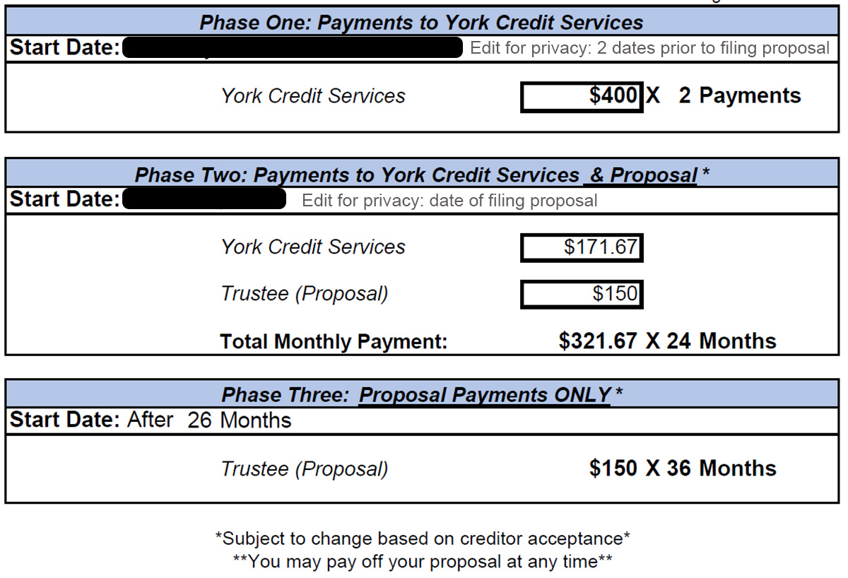 payment plan including york credit fees and proposal costs